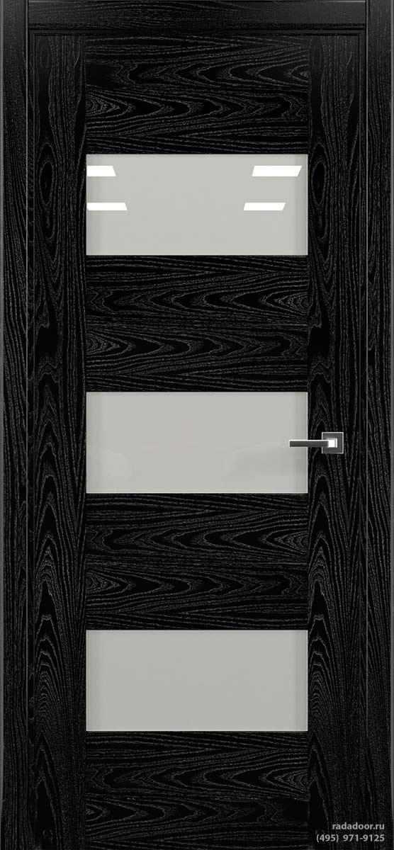 Дверь Рада Polo ДО-1, исп. 1 (noir)